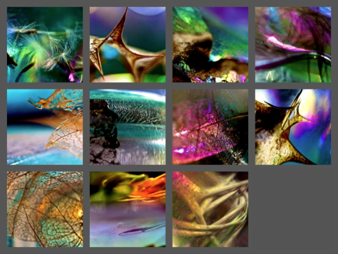 gallery-macroscapes.png