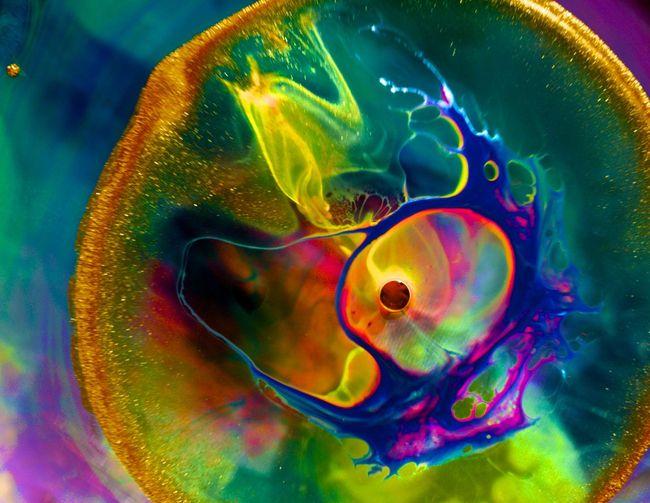 oval-window-bubble-eye.jpg