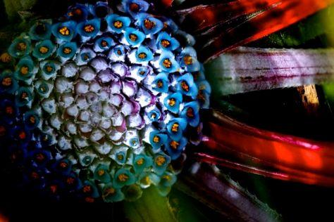 special-spirals.jpg
